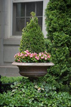 French inspired elegance. Garden design: Winston Flowers. Photography credit: Felix Cutillo. ♥