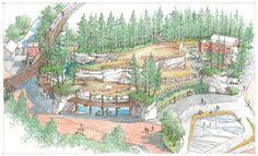 Polar bear- Oregon zoo