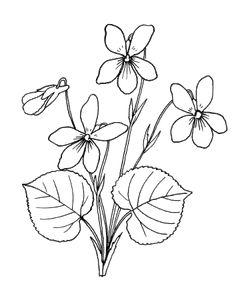 Выкройки и сборка цветов / Декоративные цветы из ткани, бумаги, кожи: Практическое руководство Band Kunst, Stained Glass Patterns Free, Drawing Sketches, Drawings, Flower Coloring Pages, Ribbon Art, Simple Shapes, Flower Patterns, Paper Flowers