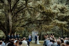 New-Zealand-wedding-photographer_-55296-2.jpg