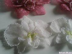 лепестки из бисера, как плести из бисера цветы, орхидея из бисера, орхидея фаленопсис из бисера