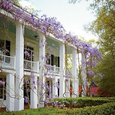 southern porch and wisteria  (via Pin by Berengaria on The South | Pinterest)