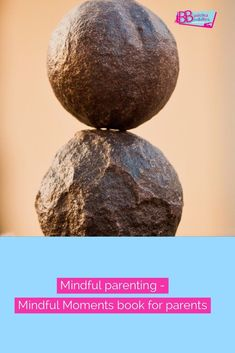 Pick up some mindful tips in the latest blog, you can also check out the book by Mindful Parenting Guide, Rachel Hawkes.