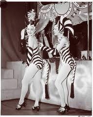 zebra costume - Google Search