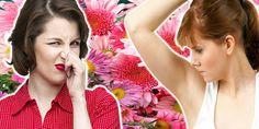 Como todo ser vivo, ao longo de sua evolução as plantas desenvolveram características que facilitam sua sobrevivência. A cor e o perfume das flores são um bom exemplo disso.