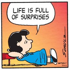 Life is full of surprises. http://www.vandorproducts.com