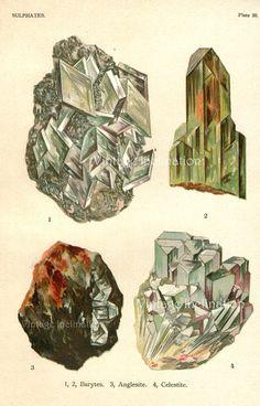 Vintage minerals print