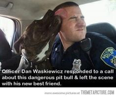 Officer respond to call about a dangerous pit bull and leaves with new best friend.