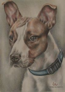 """""""Baxter"""" Colored Pencil on Watercolor Paper, Artistry by Lisa Marie SOLD"""