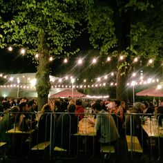 Berlin best beer garden is out! Don't waste your time searching. Find all you need to know about Berlin's best beer gardens. Places Around The World, Oh The Places You'll Go, Around The Worlds, Berlin Things To Do In, Berlin Nightlife, Berlin Travel, Best Christmas Markets, Garden Guide, Garden Pictures