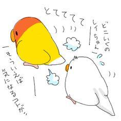 Rei-chan, wait! どこいくの??レイちゃん。