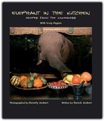 Elephant in the Kitchen - yummy recipes from Mombo Camp!