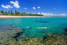 Taipus de Fora Beach / Bahia - Brazil