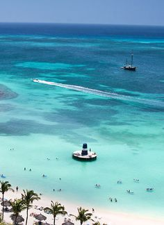 Aruba Trip MUST #50: Grab some snorkeling gear at the Occidental Grand Aruba so I can snorkel in clear, warm waters. #aioutlet