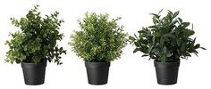 Great for window boxes. Have to remember to spray sun protector on them. FEJKA Artificial potted plant $5.99