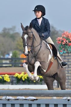 We are a full service Hunter/Jumper barn located near Chicago, founded in 1985, we're a family owned and operated training facility dedicated to offering comprehensive training & care for both horse & rider.