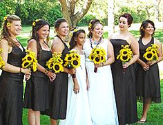 Sunflowers and black