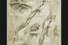 inedit Leonardo da Vinci