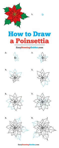 How to Draw a Poinsettia - Really Easy Drawing Tutorial