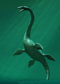 Elasmosaurus set by seleneyue