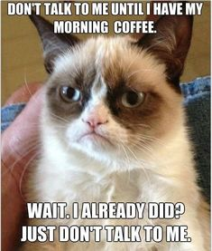 grumpy cat smile picture   Mr-Grumpy-cat-funny-hilarious-pictures-laughing-time-smile-LOL-time-17