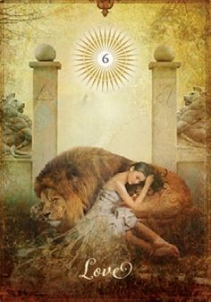 Get A Free Tarot Card Reading Using Our Oracle Card Reader Best Tarot Decks, Free Tarot Cards, Signo Libra, Lion Love, Mudras, Oracle Tarot, Angel Cards, Major Arcana, Card Reading