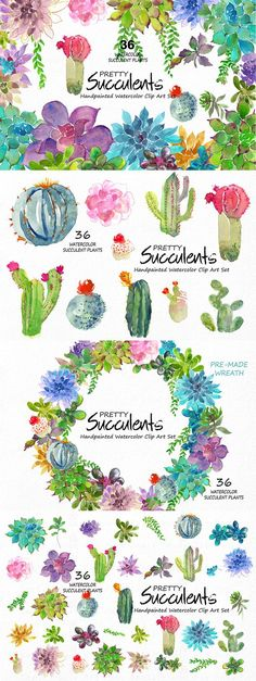this pack of 36 watercolor succulents. All have been painted by hand, are colored and ready to use. These graphics are perfect to use on wedding invitations, stationery, greeting cards, and more. Watercolor Succulents, Watercolor Flowers, Watercolor Wedding, Succulents Painting, Calligraphy Watercolor, Watercolour Painting, Painting & Drawing, Watercolor Tattoo, Kunst Poster