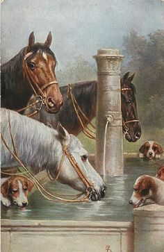 three horses and four foxhounds at water trough