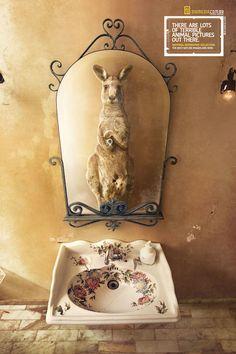 National Geographic a fait appel à l'agence Heads à Sao Paulo au Brésil, pour concevoir des affiches d'animaux réalisant des « selfies » avec leurs téléphones portables devant leurs miroirs d'ascenseur, de salle de bain et de chambre. Une campagne amusante menée par Silvio Medeiros et Pedro Galdi.