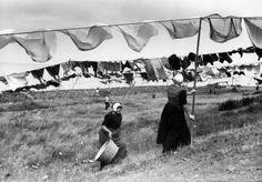 Urk : wedstijd wasophangen zonder knijpers - Wasvrouw anno 1900 verhuur / te…