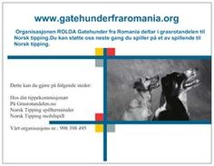 """3 EUR for a promotional magnet.  Donate securely by PayPal at roldaro@gmail.com and mark """"promotional magnet"""""""