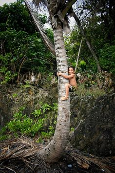 Anyone who was lucky enough to spend their childhood in the islands, knows just how fun this can be. Nothing like exploring your backyard (the entire island...lol)