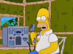 Homer Ham Radio. My grandfather was a ham operator. He even looked a bit like Homer.