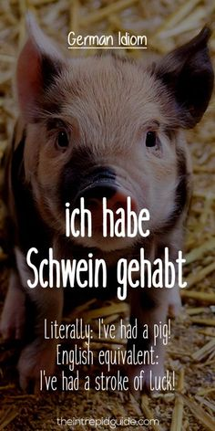 27 Hilarious Everyday German Idioms and Expressions German Grammar, German Words, Learn German, Learn English, Learn French, German Resources, Germany Language, German Quotes, German English