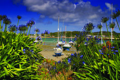 Green Bay, Bryher - Roger Broughton Photography
