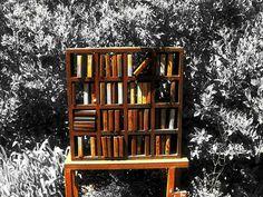 books in a garden