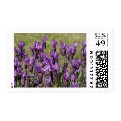 Lavender Flowers Wedding Postage