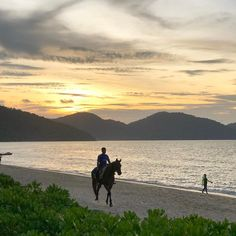 Feringghi beach #beach #penang #hotel #parkroyal #malaysia #tagsforlikes #instagood #love #happy #beautiful #instadaily #like4like #amazing #instamood #life #sky #nature #photo #awesome #good #travel #travelphotography