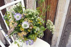 lorettaflower