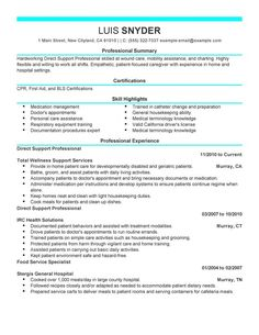direct support professional resume sample - Direct Support Professional Resume