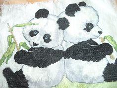 osos panda :)  ;)