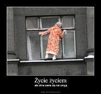 Stylowi.pl - Odkrywaj, kolekcjonuj, kupuj Very Funny Memes, Funny True Quotes, Wtf Funny, Funny Cute, Funny Lyrics, Cool Pictures, Funny Pictures, Polish Memes, Fotografia