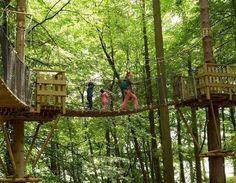 Wandelen tussen de boomkruinen in Han - Dagje uit - Reizen - KnackWeekend.be
