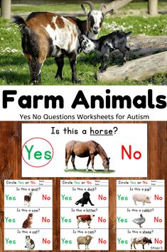 A great activity to help with yes/ no questions! I have this for a concerned parent and it was engaging and helped with driving more yes/no questions in other situations. Love it! #farmanimals #specialeducation Vocabulary Activities, Kindergarten Activities, Classroom Activities, Learning Activities, Creative Teaching, Teaching Tips, Special Needs Students, Elementary Teaching