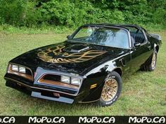 1978 Trans am - I dated a guy that drove one of these - I was a senior in HS and he was a college student.