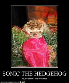 SONIC THE HEDGEHOG. Ironic if you know about Sonic, otherwise you won't get it.