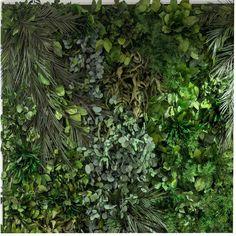 Natura ne inspira: gradina verticala 100% plante conservate. Herbs, Interior Design, Plant, Nest Design, Home Interior Design, Interior Designing, Herb, Home Decor, Home Interiors