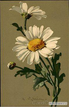 Gallery.ru / Фото #58 - цветочные акварели - ninmix