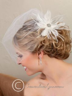 Birdcage Veil with Round Feather Accent