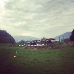 Mucche e fattorie dietro l'angolo...!! | Mamma Stranger Blog | Bloglovin'